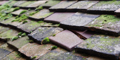 Wichenford roof repair costs